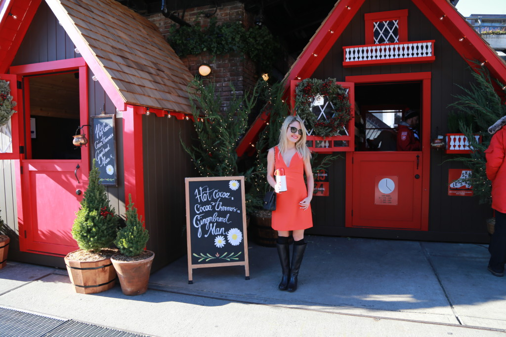 Caitlin Hartley of Styled American girl in front of christmas stand