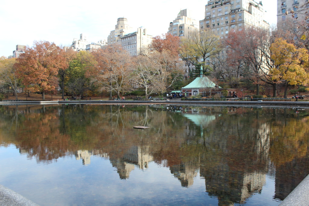 Caitlin Hartley of Styled American small lake in central park in the Winter