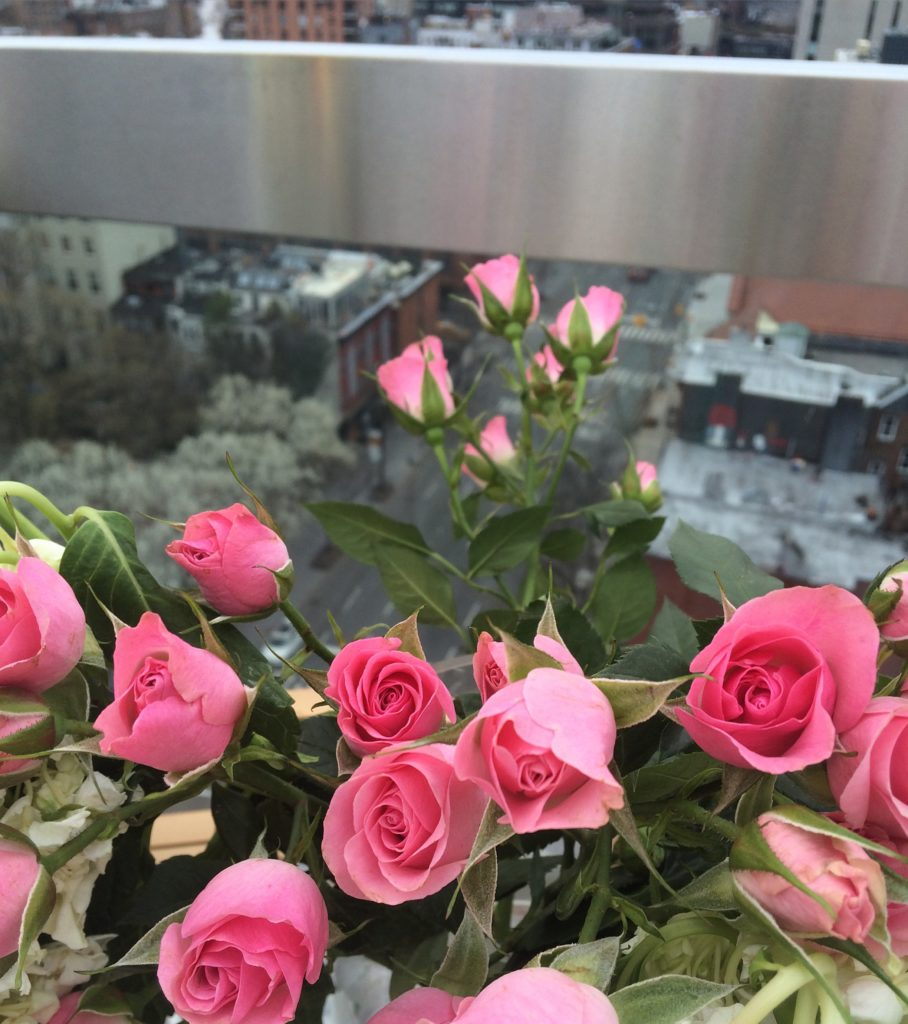 Caitlin Hartley of Styled American pink roses on nyc rooftop