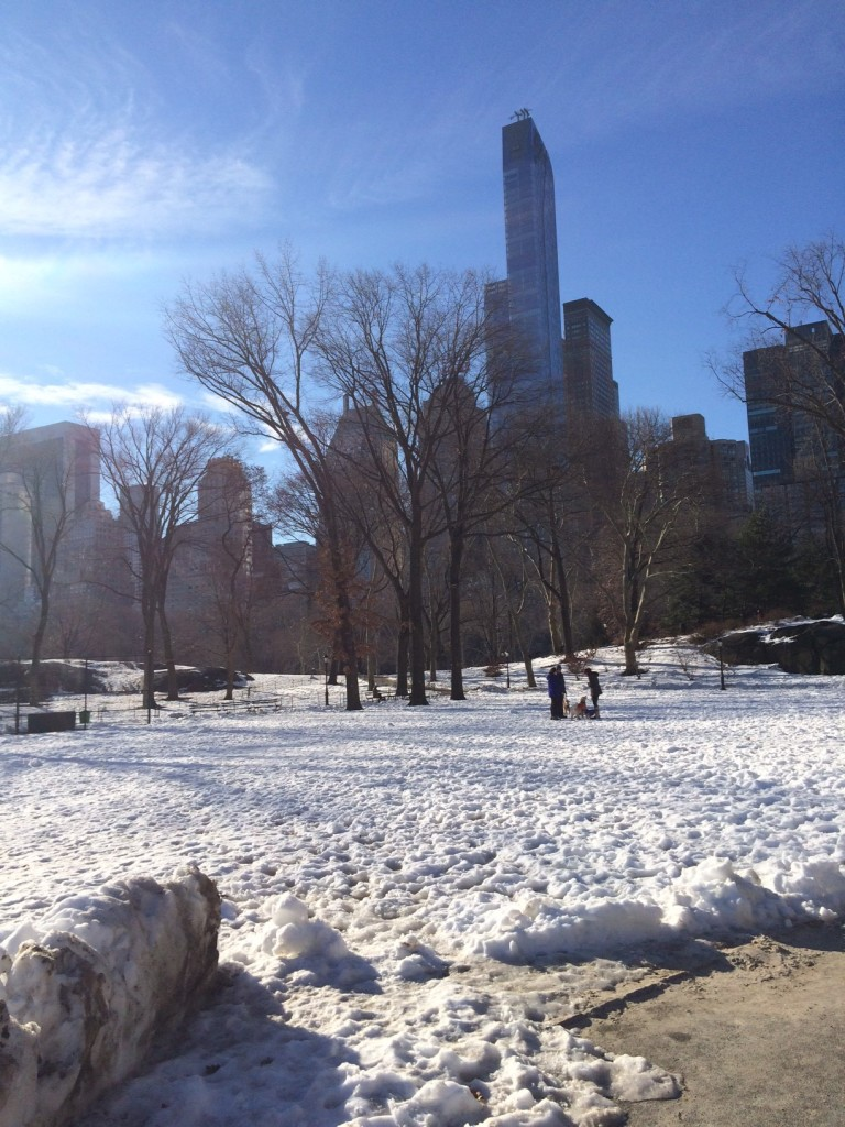 Caitlin Hartley of Styled American snowy pictures of Central Park