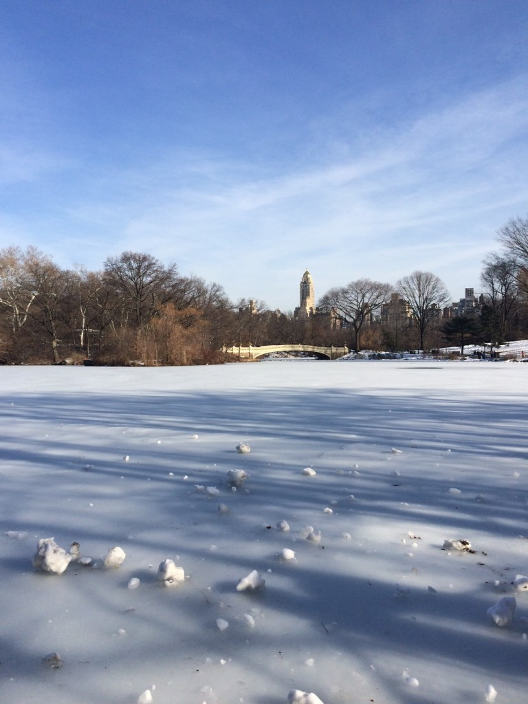 Caitlin Hartley of Styled American frozen central park lake