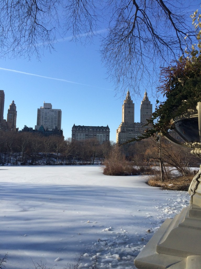Caitlin Hartley of Styled American view from bow bride of frozen Central Park lake