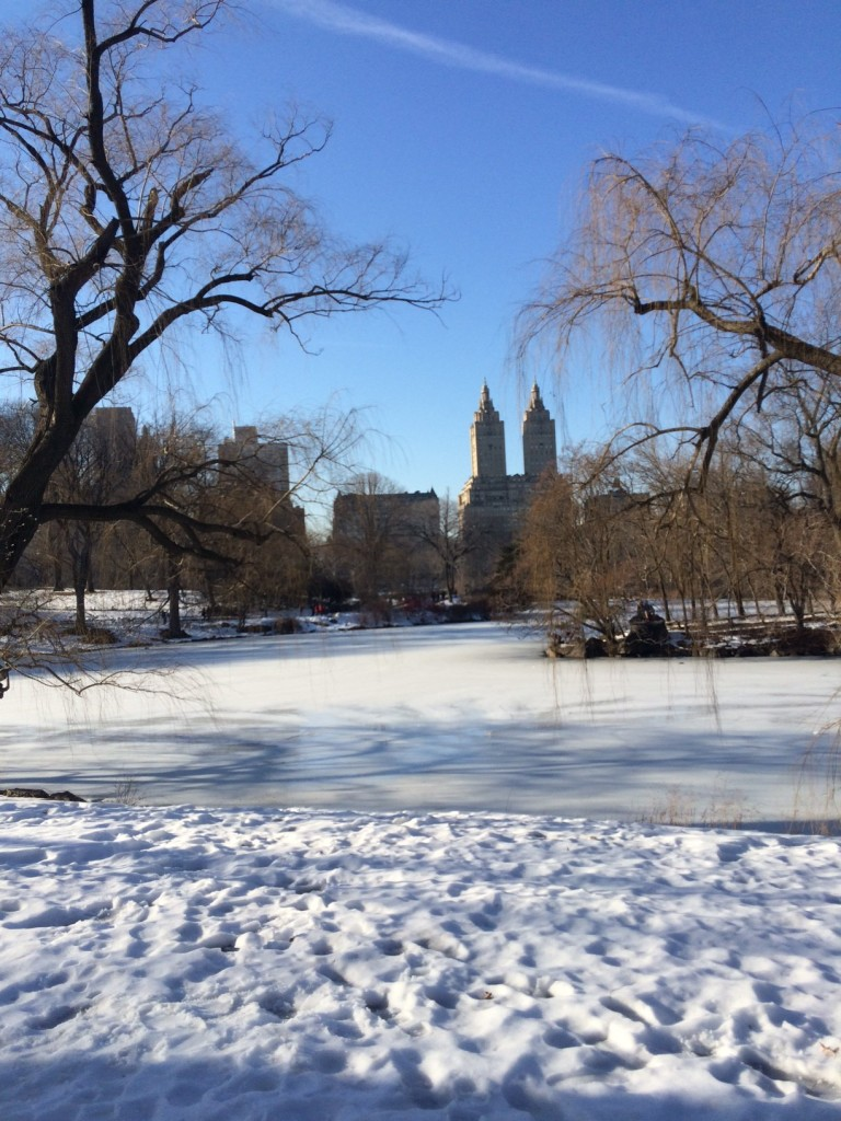 Caitlin Hartley of Styled American snowy central park lakes