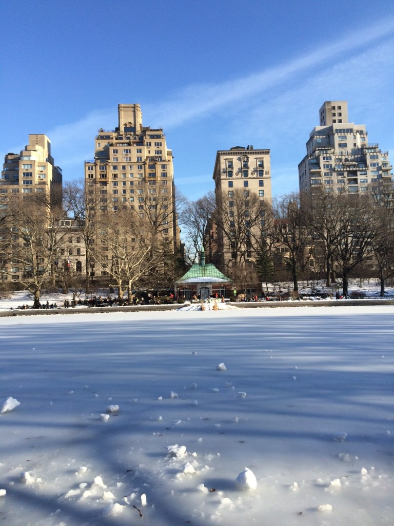 Caitlin Hartley of Styled American snowy central park, central park in the Winter
