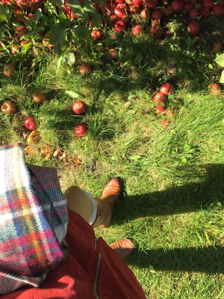 shoefie-apple-orchard http://styledamerican.com/apple-orchard-and-pumpkin-patch/